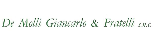 Secondo logo De Molli Giancarlo Industrie S.p.a.